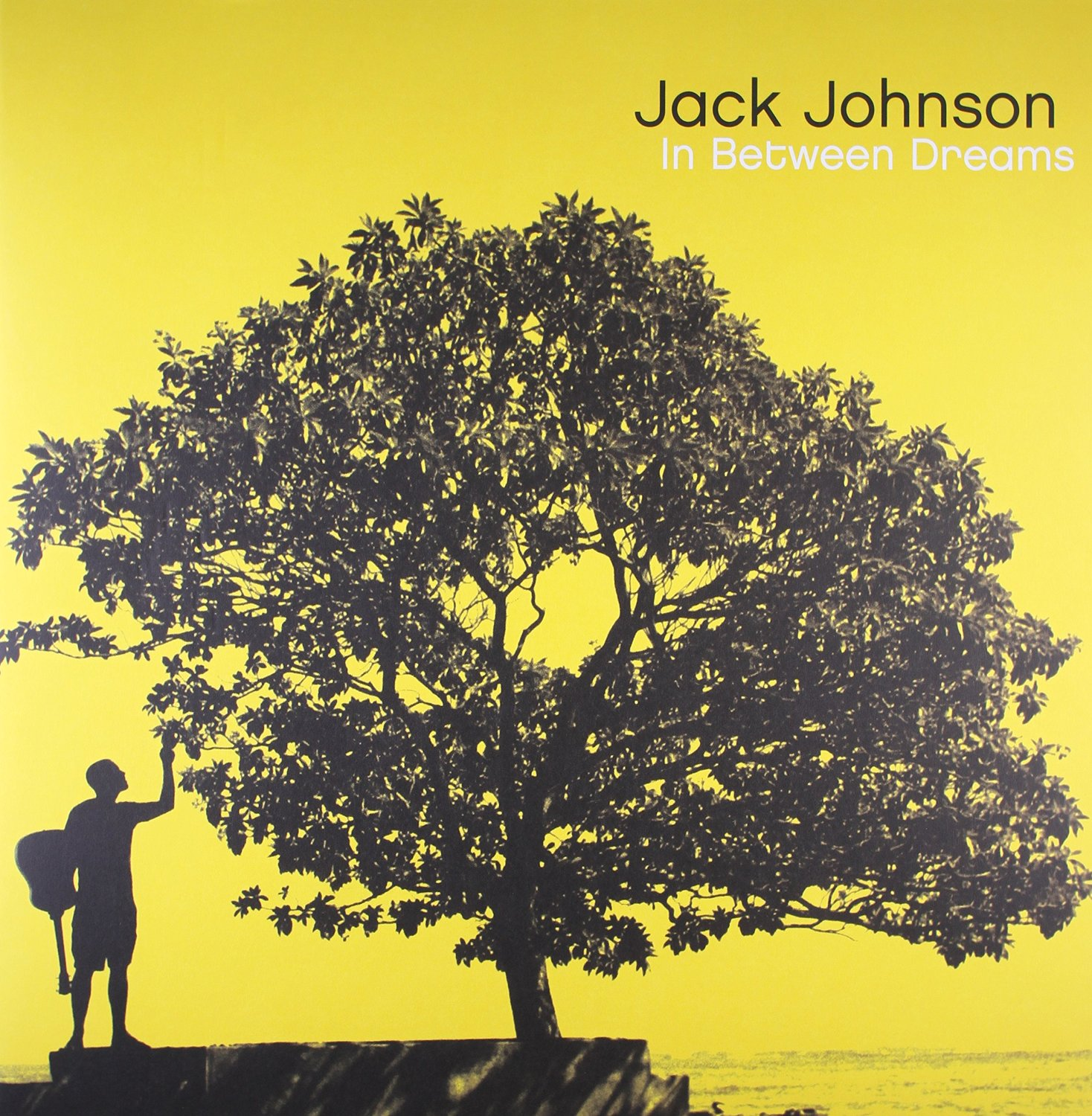 Album Art for In Between Dreams by JACK JOHNSON