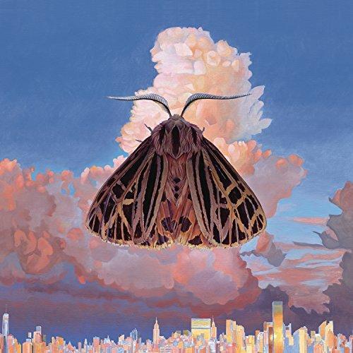 Chairlift: Moth Vinyl Album Art